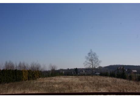 Działka do wynajęcia - Rybnik, Rybnik M., 2500 m², 1500 PLN, NET-GRJ-GW-141