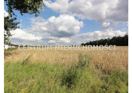 Działka na sprzedaż - Tryszczyn, Koronowo, Bydgoski, 1325 m², 95 000 PLN, NET-CNI-GS-109192