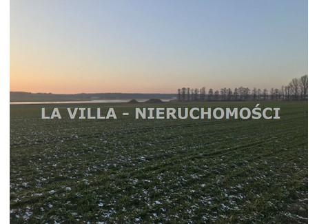 Działka na sprzedaż - Dąbcze, Dąbcze, Rydzyna, Leszczyński, 36 600 m², 3 800 000 PLN, NET-LAV-GS-1023