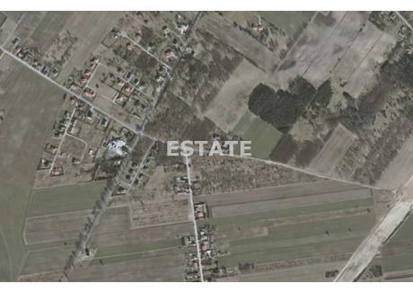 Działka na sprzedaż - Natolin, Nowosolna, Łódzki Wschodni, 41 623 m², 4 370 415 PLN, NET-EST-GS-7783