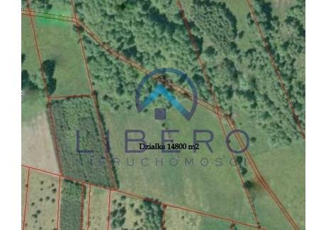 Działka na sprzedaż - Wólka Grochowa, Długosiodło, Wyszkowski, 14 800 m², 83 000 PLN, NET-32/3342/OGS