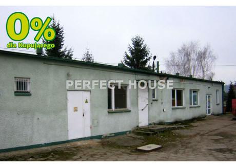 Obiekt na sprzedaż - Młyńska Golub Dobrzyń, Golubsko-Dobrzyński, 364 m², 295 000 PLN, NET-PRF-BS-3070