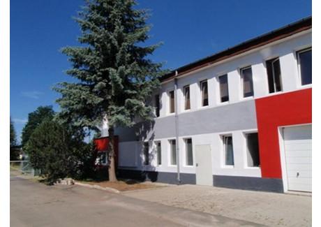 Dom na sprzedaż - Jelenia Góra, 495 m², 999 000 PLN, NET-PIN24824