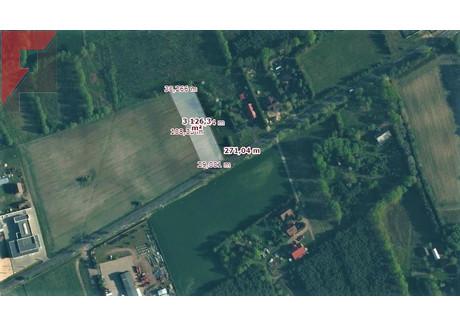 Działka na sprzedaż - Nowy Tomyśl, Nowotomyski, 3122 m², 437 080 PLN, NET-213/3497/OGS