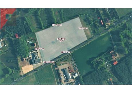 Działka na sprzedaż - Nowy Tomyśl, Nowotomyski, 27 013 m², 3 781 820 PLN, NET-214/3497/OGS