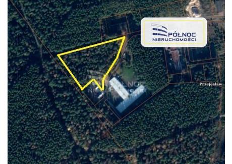 Działka na sprzedaż - Przejęsław, Osiecznica, Bolesławiecki, 9799 m², 50 000 PLN, NET-31558/3877/OGS