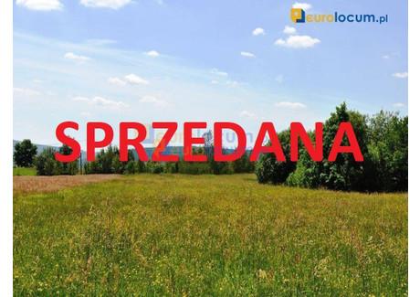 Działka na sprzedaż - Ściegnia Skorucin, Ściegnia, Bodzentyn, Kielecki, 4315 m², 194 175 PLN, NET-25980376
