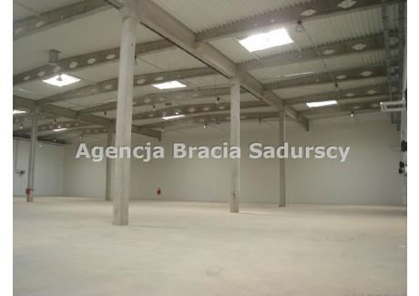 Magazyn do wynajęcia - Podgórze, Rybitwy, Kraków, Kraków M., 870 m², 15 000 PLN, NET-BS3-HW-139179