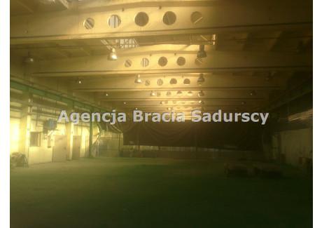 Magazyn do wynajęcia - Niepołomice, Wielicki, 535 m², 8560 PLN, NET-BS3-HW-96378