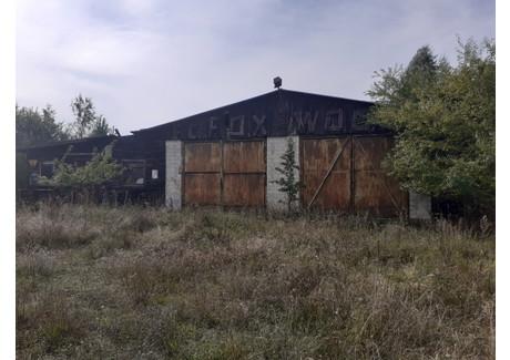 Działka na sprzedaż - Linowo, Dźwierzuty (Gm.), Szczycieński (Pow.), 7000 m², 250 000 PLN, NET-814/DZ/L