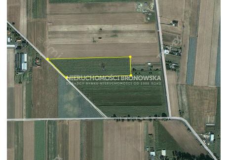 Działka na sprzedaż - Kalisz, Kalisz M., 20 204 m², 1 616 320 PLN, NET-BRN-GS-136