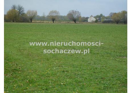 Działka na sprzedaż - Brzozowiec, Iłów, Sochaczewski, 10 400 m², 208 000 PLN, NET-ANS-GS-195