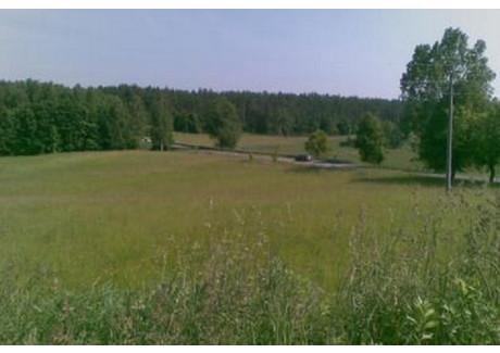 Działka na sprzedaż - Sumki, Orzysz (Gm.), Piski (Pow.), 171 000 m², 769 500 PLN, NET-270217