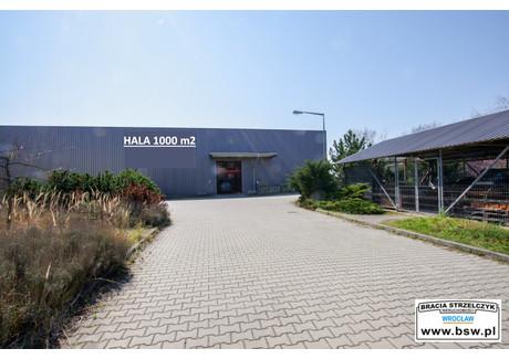 Magazyn, hala do wynajęcia - Błonie, Miękinia (gm.), Średzki (pow.), 1000 m², 12 000 PLN, NET-HW0249