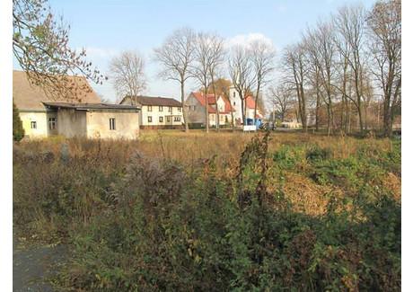 Działka na sprzedaż - Płużnica Wielka, Strzelce Opolskie, Strzelecki, 3560 m², 195 000 PLN, NET-ZUR-GS-574
