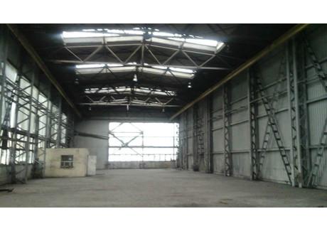Magazyn do wynajęcia - Żory, Żory M., 1200 m², 14 400 PLN, NET-ZUR-HW-3221