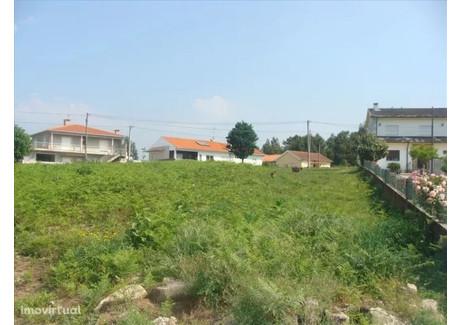 Działka na sprzedaż - Tamel (São Veríssimo), Portugalia, 7000 m², 300 000 Euro (1 287 000 PLN), NET-51270378